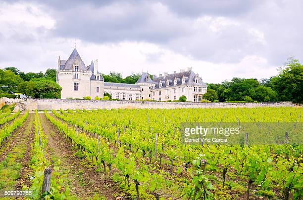 Château de Brézé is a small, dry-moated castle located in Brézé, near Saumur in the Loire Valley, France. The château was transformed during the 16th...
