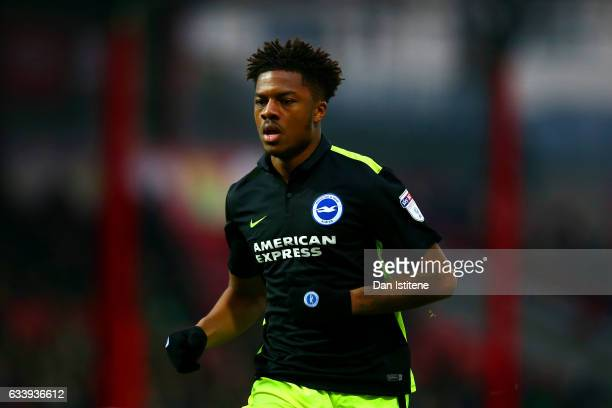 Chuba Akpom of Brighton Hove Albion runs during the Sky Bet Championship match between Brentford and Brighton Hove Albion at Griffin Park on February...
