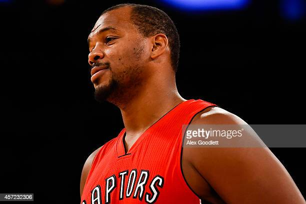 Chuck Hayes of the Toronto Raptors looks on during a game against the New York Knicks at Madison Square Garden on October 13 2014 in New York City...