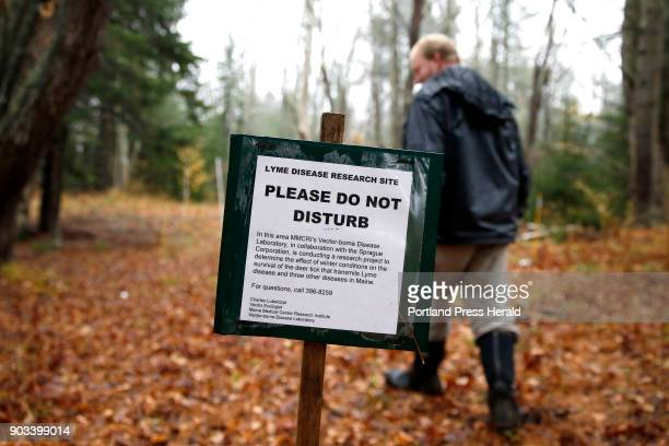 Chuck Lubelczyk a vector ecologist for Maine Medical Center Research Institute walks into a lyme disease research site in Cape Elizabeth