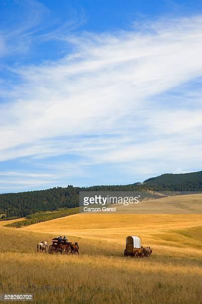 Chuck Wagons Crossing the Prairies