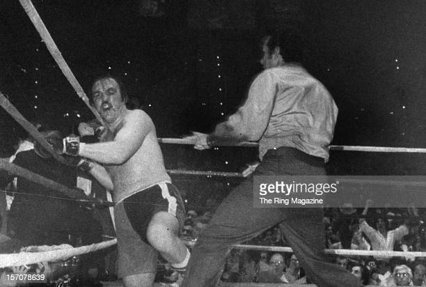 Chuck Wepner goes down during a fight against Muhammad Ali at Richfield Coliseum on March 241975 in ClevelandOhio Muhammad Ali won the WBC...