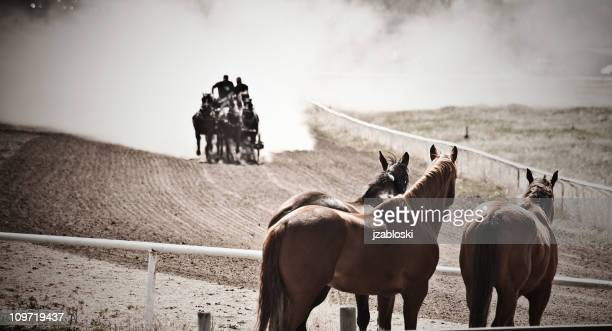 chuckwagon race. - stampeding stock pictures, royalty-free photos & images
