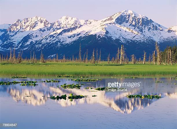 chugach mountains - anchorage alaska stock photos and pictures