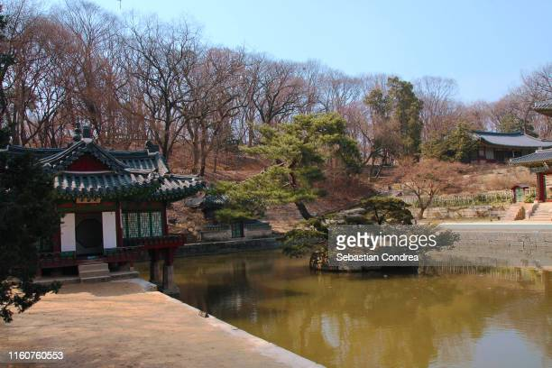 chuihyangjeong pavilion at the deokjin park in jeonju, south korea, discovery seoul, korea - jeonju stock pictures, royalty-free photos & images