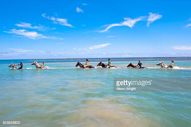 chukka caribbean adventures, jamaica. - jamaica stockfoto's en -beelden