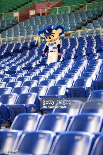 Chunichi Dragons mascot Doala is seen in the empty stand as a baseball spring training game between Hiroshima Toyo Carp and Chunichi Dragons is held...