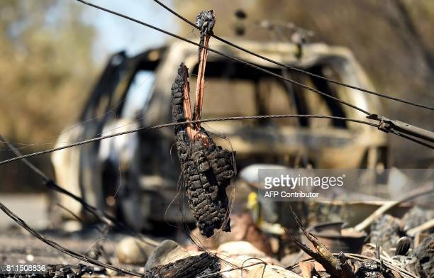 Chunk of burned telephone pole hangs on felled power lines near a burned out vehicle after the Wall fire tore through the area and burned dozens of...