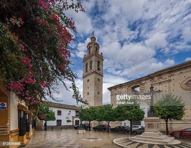 church of santa cruz in ecija,seville province - エシハ ストックフォトと画像