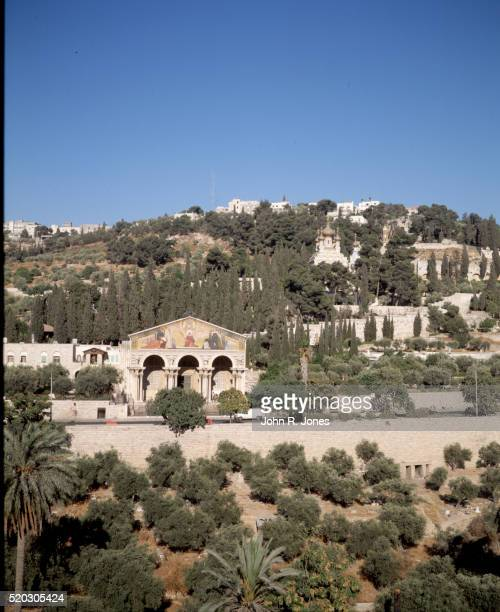 churches of jerusalem - garden of gethsemane stock pictures, royalty-free photos & images