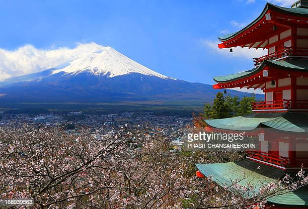 Chureito Pagoda with its views of Mount Fuji in combination with cherry blossoms and autumn colors.