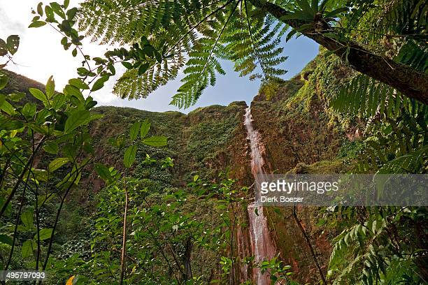 Chutes du Carbet, a waterfall in a rainforest, Saint-Claude, Arrondissement of Basse-Terre, Guadeloupe, France