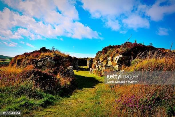 chysauster ancient village - village stock pictures, royalty-free photos & images