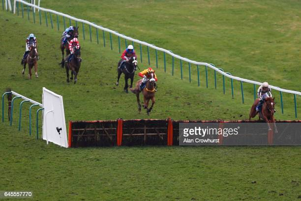 Ciaran Gethings riding Seas Of Green clear the last to win The totepool Racecourse Debit Card Betting Handicap Hurdle Race at Fontwell Park on...