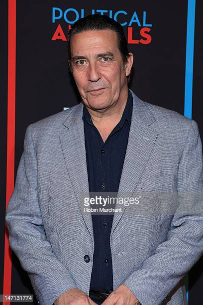 Ciaran Hinds attends USA Network's Political Animals New York Screening at The Morgan Library Museum on June 25 2012 in New York City