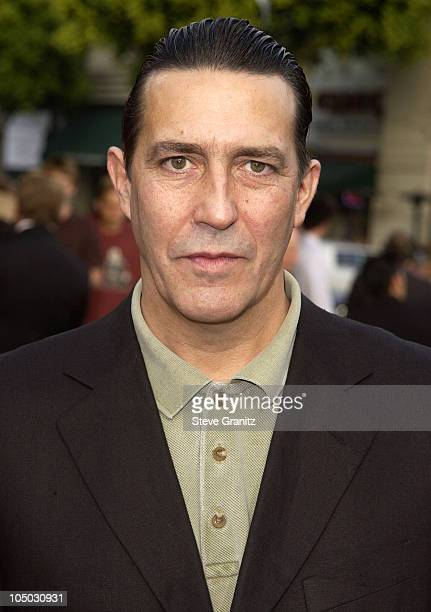 Ciaran Hinds during The Sum Of All Fears Premiere Los Angeles at Mann Village in Westwood California United States