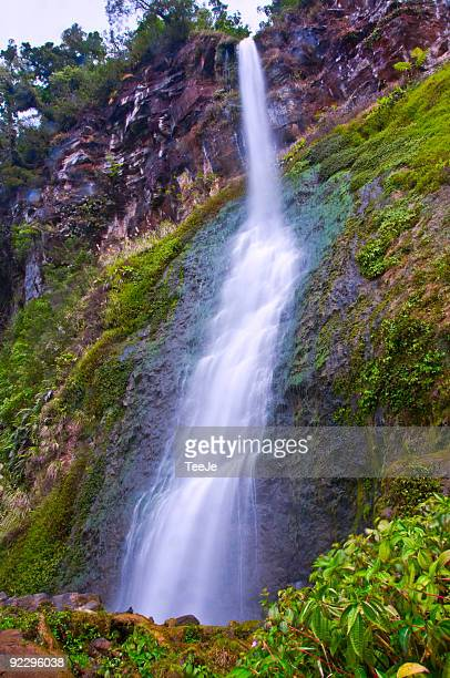 cidenden falls  - bogor stock pictures, royalty-free photos & images