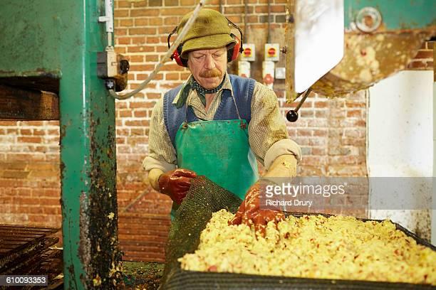 Cider maker preparing apples for pressing