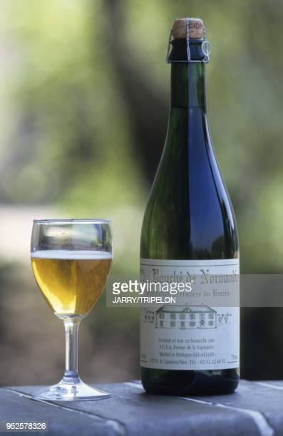 Cidre, Ferme de la Sapiniere, Saint-Laurent-sur-Mer, departement Calvados, region Normandie, France cider, Ferme de la Sapiniere,...