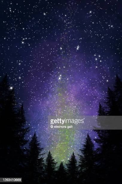 cielo stellato - cielo stock pictures, royalty-free photos & images