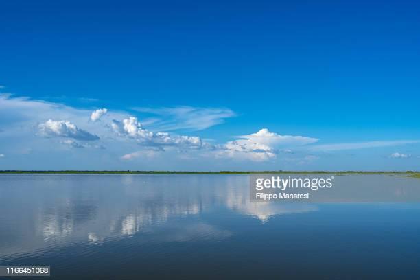 cienaga de pijiño - waterhole stock pictures, royalty-free photos & images