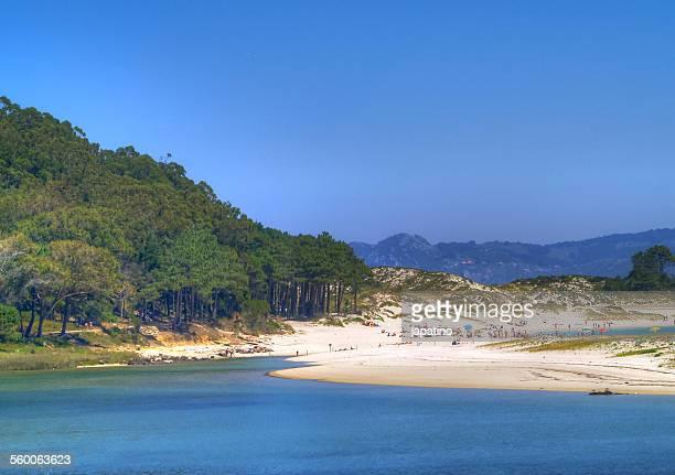 cies islands - grove imagens e fotografias de stock