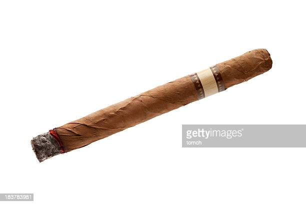 Cigar on white background