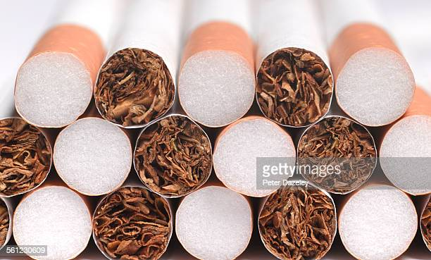cigarette manufacturing - cigarette stock pictures, royalty-free photos & images