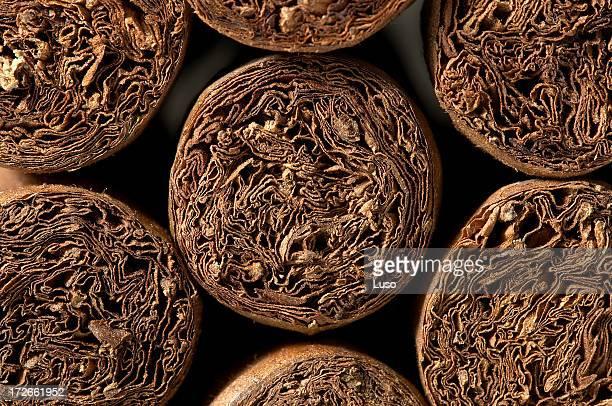 Cigars / detail