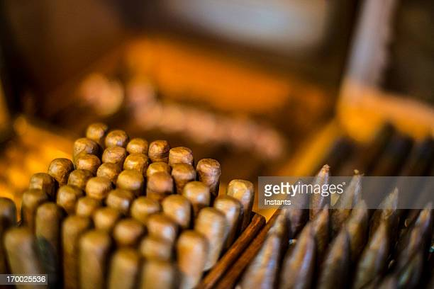 cigars - cigar stock pictures, royalty-free photos & images