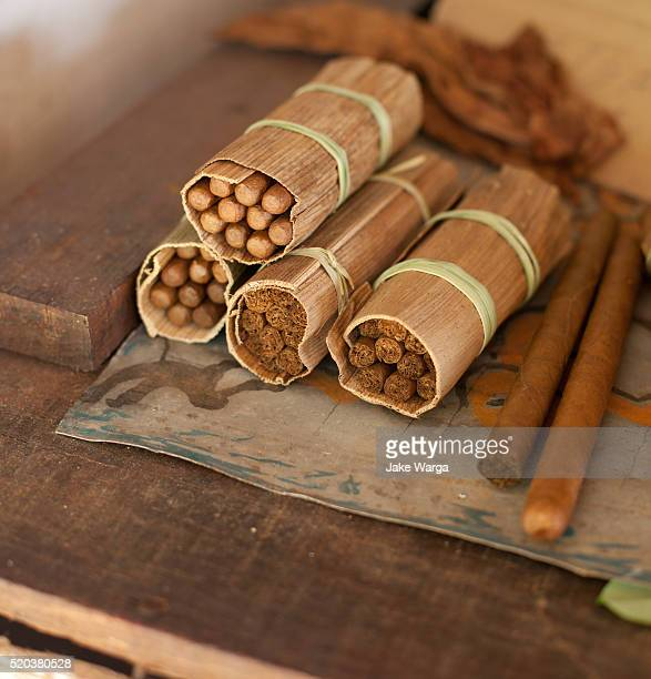 cigars rolled at tobacco farm - jake warga stock pictures, royalty-free photos & images