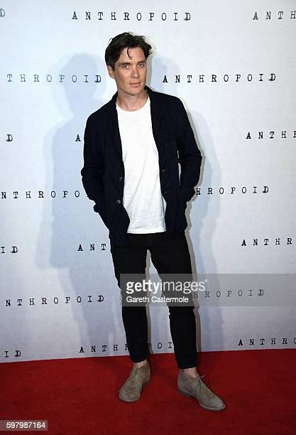 Cillian Murphy attends the 'Anthropoid' UK film premiere at the BFI Southbank on August 30 2016 in London England