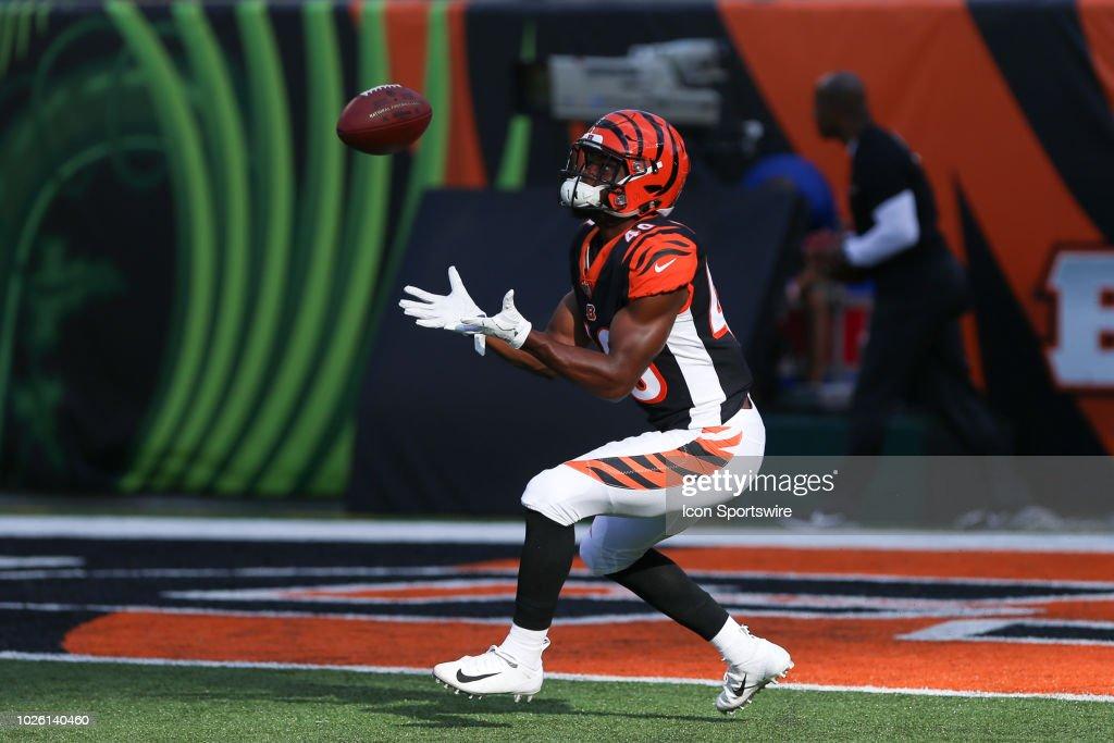 NFL: AUG 30 Preseason - Colts at Bengals : News Photo