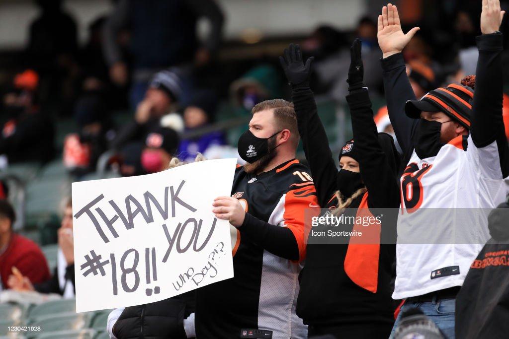 NFL: JAN 03 Ravens at Bengals : News Photo