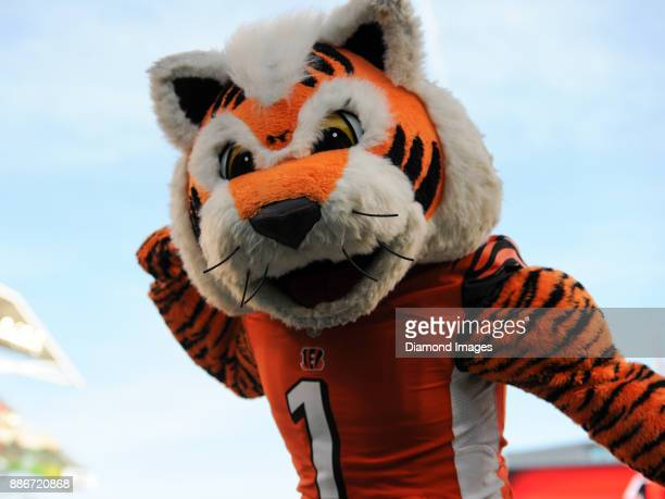 Cincinnati Bengals mascot Who Dey leads the crowd in a cheer in the fourth quarter of a game on November 26 2017 against the Cleveland Browns at Paul...