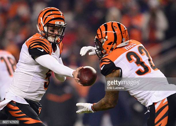 Cincinnati Bengals quarterback AJ McCarron hands off to Cincinnati Bengals running back Jeremy Hill during the first quarter December 28 2015 at...