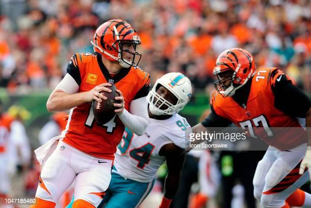 Cincinnati Bengals Quarterback Andy Dalton drops back for a pass as Miami Dolphins Defensive End Robert Quinn rushes by Cincinnati Bengals Offensive...
