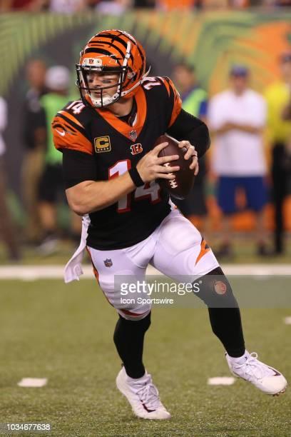 Cincinnati Bengals quarterback Andy Dalton looks to pass during the game against the Baltimore Ravens and the Cincinnati Bengals on September 13th...