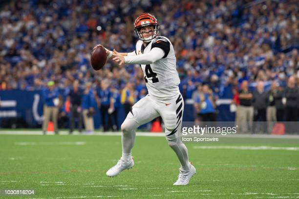 Cincinnati Bengals quarterback Andy Dalton scrambles to the outside during the NFL game between the Indianapolis Colts and Cincinnati Bengals on...