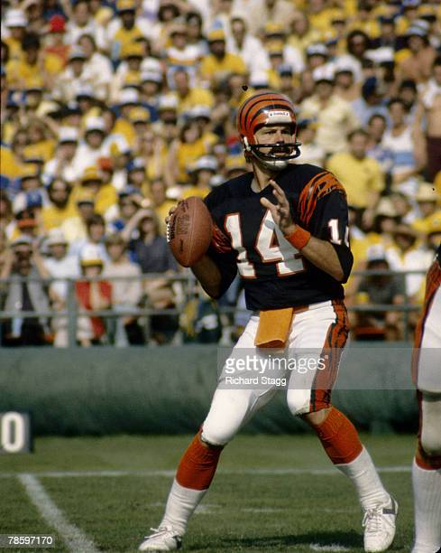 Cincinnati Bengals quarterback Ken Anderson surveys the field during a 4017 victory over the San Diego Chargers on November 8 at Jack Murphy Stadium...