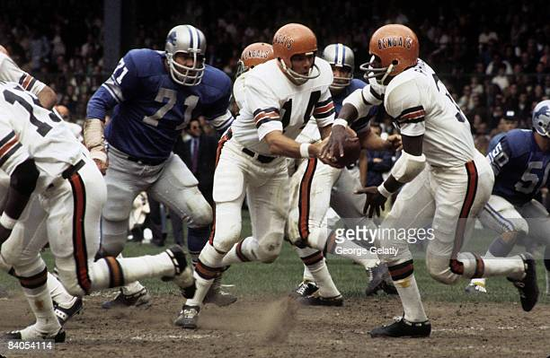 Cincinnati Bengals quarterback Sam Wyche looks to handoff to running back Jess Phillips as Lions defensive tackle Alex Karras closes in during the...