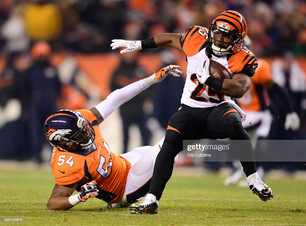 Denver Broncos versus the Cincinnati Bengals : News Photo