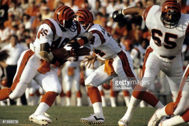 Cincinnati Bengals running back Pete Johnson carries the football during the Bengals 2417 preseason victory over the Tampa Bay Buccaneers on August 8...