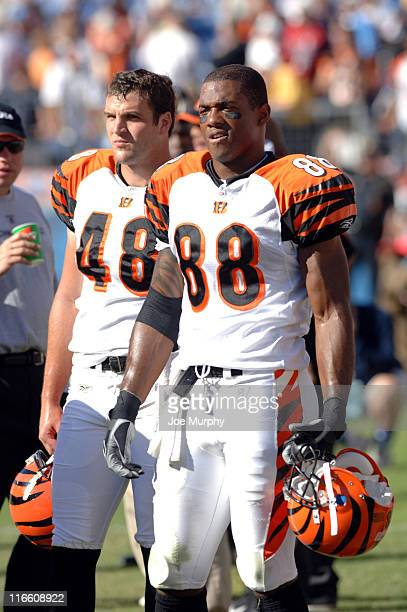 Cincinnati Bengals Tab Perry and Brad St Louis look on from the sideline during the game against the Tennessee Titans at the Coliseum in Nashville...