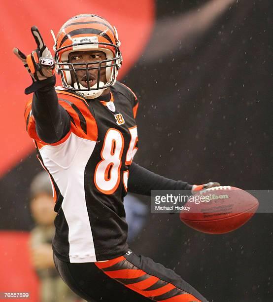 Cincinnati Bengals wide receiver Chad Johnson celebrates a touchdown versus Baltimore at Paul Brown Stadium Cincinnati Ohio Nov 27 2005 The Bengals...