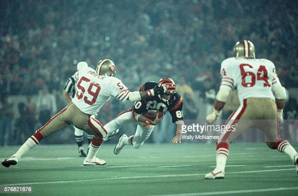 Cincinnati Bengals wide receiver Cris Collinsworth dives with the football as San Francisco 49ers linebackers Willie Harper and Jack Reynolds prepare...