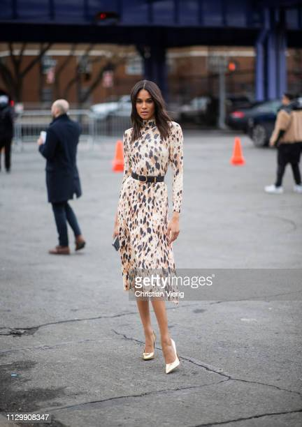 Cindy Bruna is seen wearing dress with animal print outside Boss during New York Fashion Week Autumn Winter 2019 on February 13 2019 in New York City