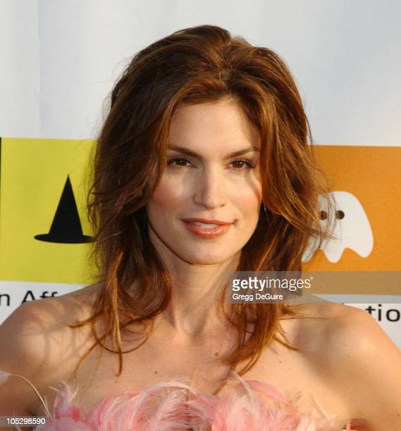 Cindy Crawford during 10th Anniversary Dream Halloween Los Angeles Fundraising Event at Barker Hanger in Santa Monica California United States