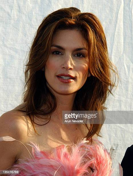 Cindy Crawford during 10th Anniversary Dream Halloween Los Angeles Fundraising Event at Barker Hangar in Santa Monica California United States