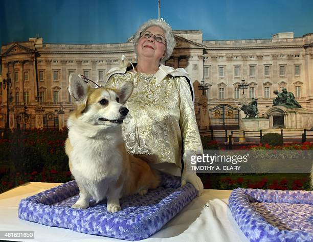 Cindy Savioli as Queen Elizabeth II with her Pembroke Welsh Corgi attend the 139th Annual Westminster Kennel Club Dog Show press conference on...